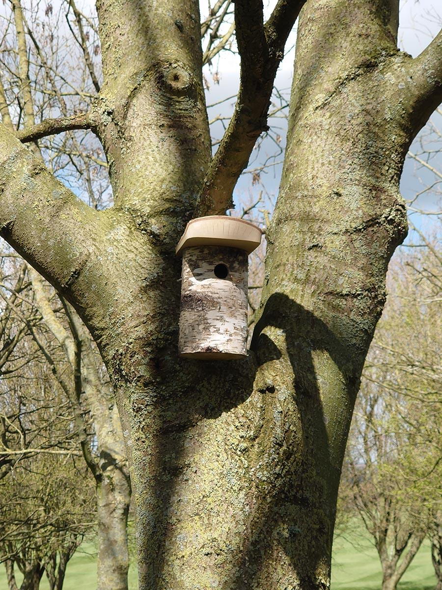 Market Harborough Nest Box