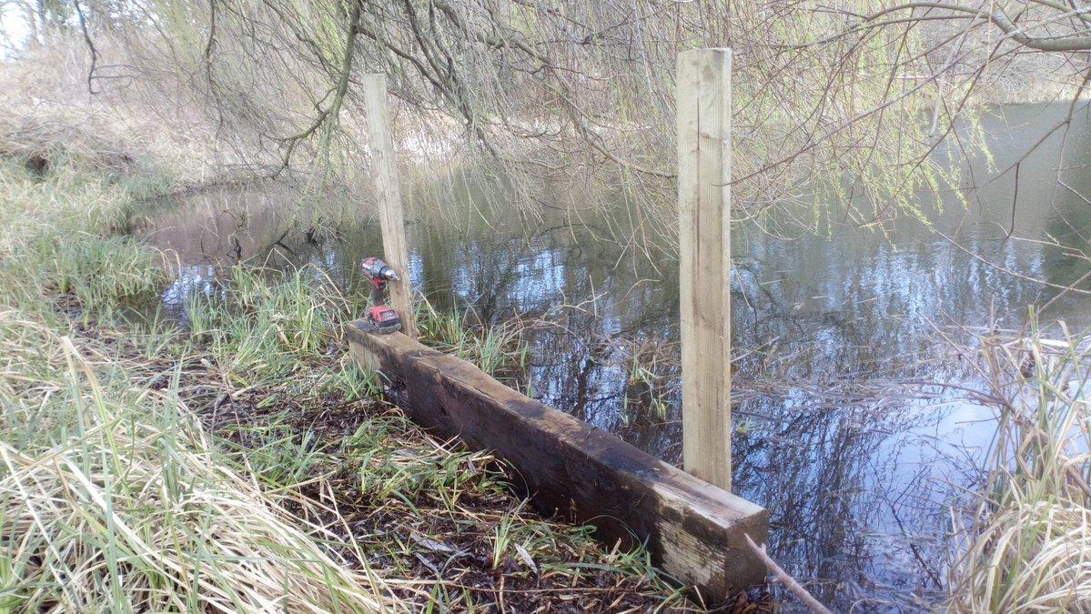 Cumberwell Park Kingfisher habitat.