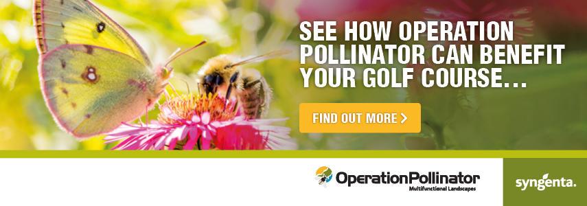 Syngenta Pollinator