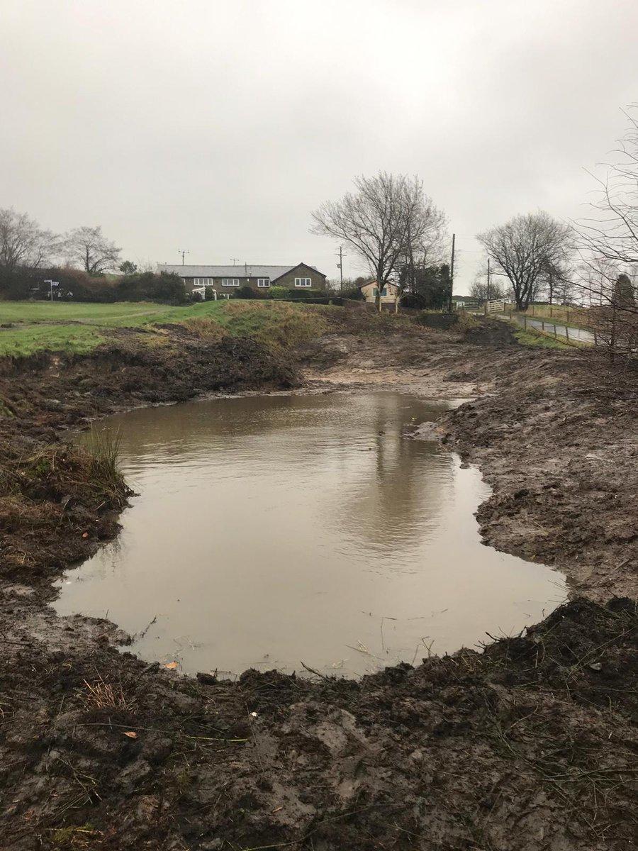 Walmersley's new pond