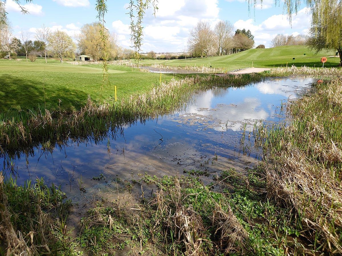 Market Harborough pond example